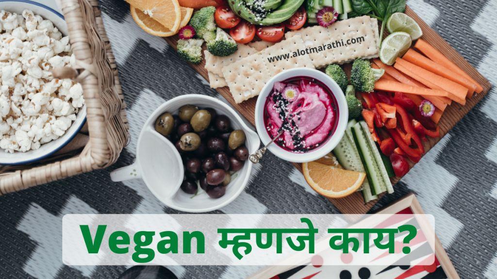 Vegan meaning in Marathi